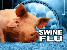 Swine flu patients swell to 56 in Lucknow
