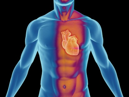 Low IQ could indicate higher risk of death due to heart disease