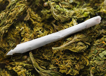 Marijuana use takes toll on teens' brain function