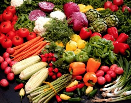 Can plant-based diets remedy chronic diseases?