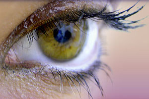 DNA 'can reveal eye colour'