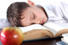 Dietary prebiotics improve sleep: Study
