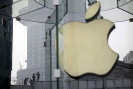 Apple shares slump, wiping $50 bln off value in Samsung 'screen war'