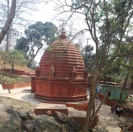 Guwahati locals, tourists launch environment drive near Basistha Temple