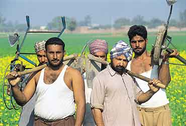 J-K Government organises agricultural fair for farmers