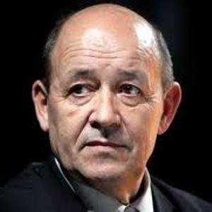 French minister says 'several hundred' Islamist militants killed in Mali