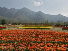 J-K: Restoration work of gardens, parks on full swing