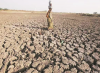 SC to hear Swaraj Abhiyan's PIL on drought-hit states