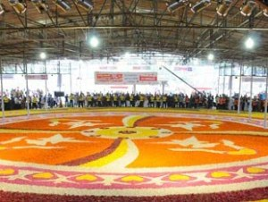 Saudis attempt to enter Guinness Record with world's largest floral carpet