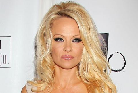 Pamela Anderson again files for divorce from husband