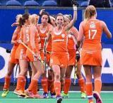 Netherland crash India 7-0 in quarter-finals of HWL