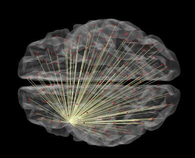 Brain imaging can tell how intelligent you are