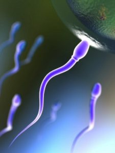 Single-sperm sequencing can be used to diagnose male infertility